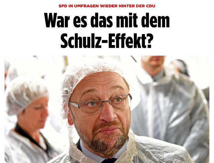 """Martin Schulz mit Schutzhaube in einer Fischfabrik. """"Bild"""" titelt: """"War es das mit dem Schulz-Effekt?"""""""