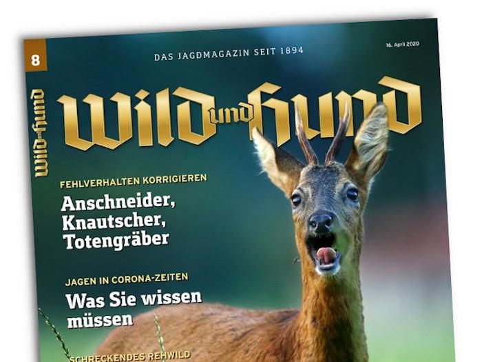Das Cover der Zeitschrift Wild und Hund