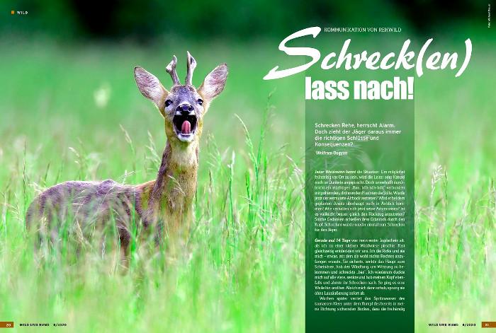 Artikel über das Schreckverhalten von Rehen in der Wild und Hund