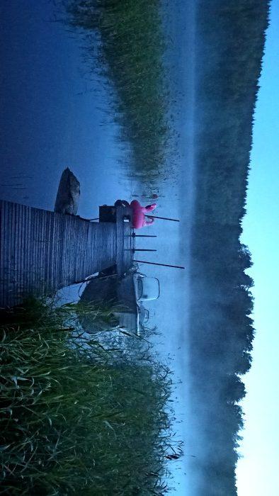 Ein See in Schweden mit einem Boot und einem Flamingo darauf im Nebel