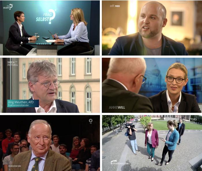 Sechs kleine TV-Bilder, die jeweils AfD-Politiker in Interviews zeigen.