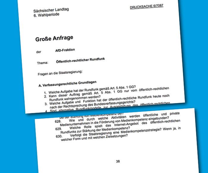 AfD-Drucksache: 630 Fragen auf 38 Seiten