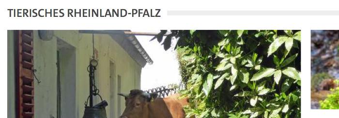 Tierisches Rheinland-Pfalz